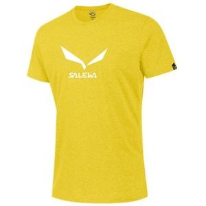 Koszulka Salewa SOLIDLOGO 2 CO M S/S TEE 25785-5730, Salewa