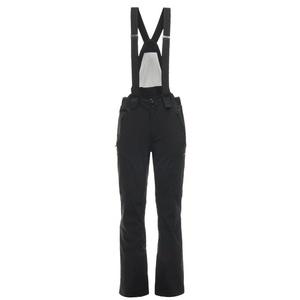 Narciarskie spodnie Spyder Men's Bormio GTX 181712-001, Spyder