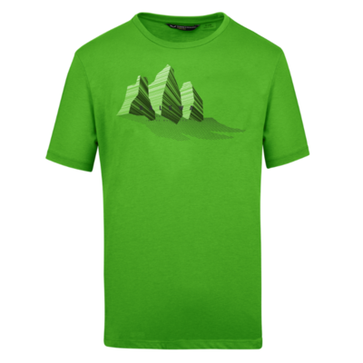 Koszulka Salewa Lines Graphic Dry M 28065-5649