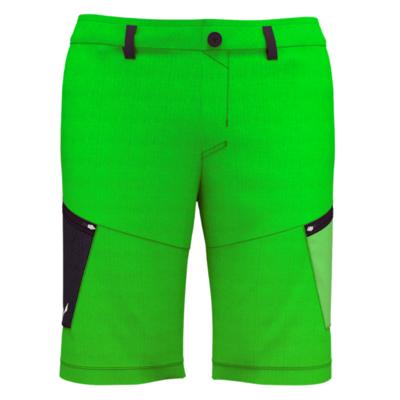 Męskie szorty Salewa Alpine Konopie M Cargo shorts 28033-5640, Salewa