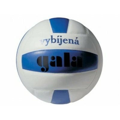 Siatkówka Gala mini szkolenie Dodgeball, Gala