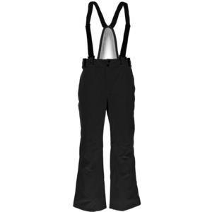 Narciarskie spodnie Spyder Men's Bormio 783230-001, Spyder